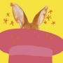 Gala mágica conejo